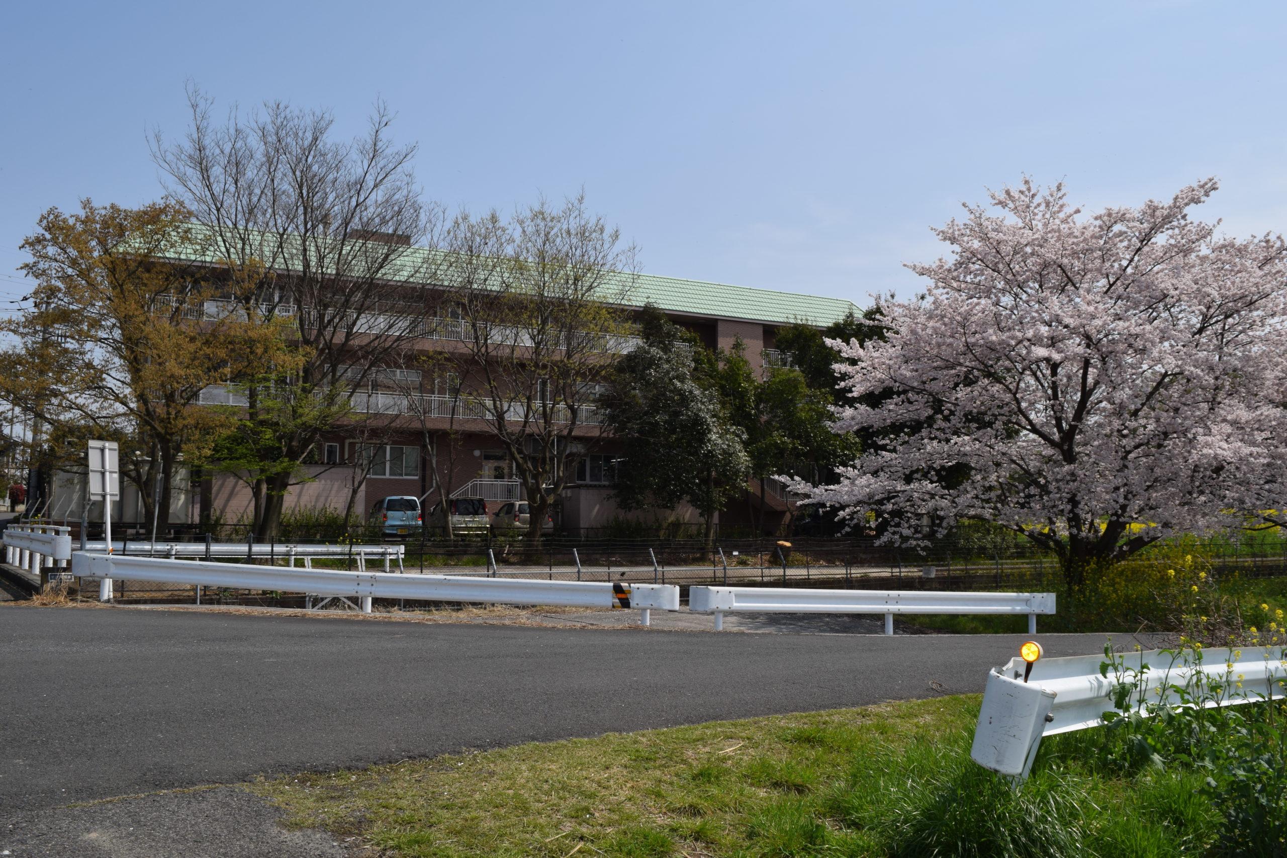 蓮田ナーシングホーム翔裕園